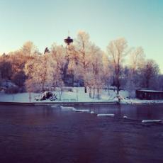Näsipuisto, Tampere (2016).