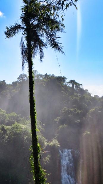 Iguazu Falls8